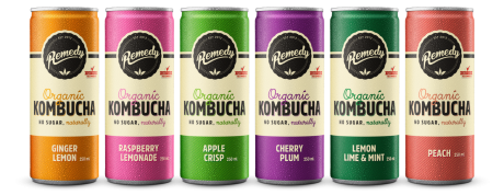 24 x Remedy Kombucha - Mixed Case - 250ml Cans