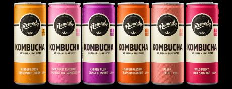 24 x Remedy Kombucha - Mixed Case - 330ml Cans