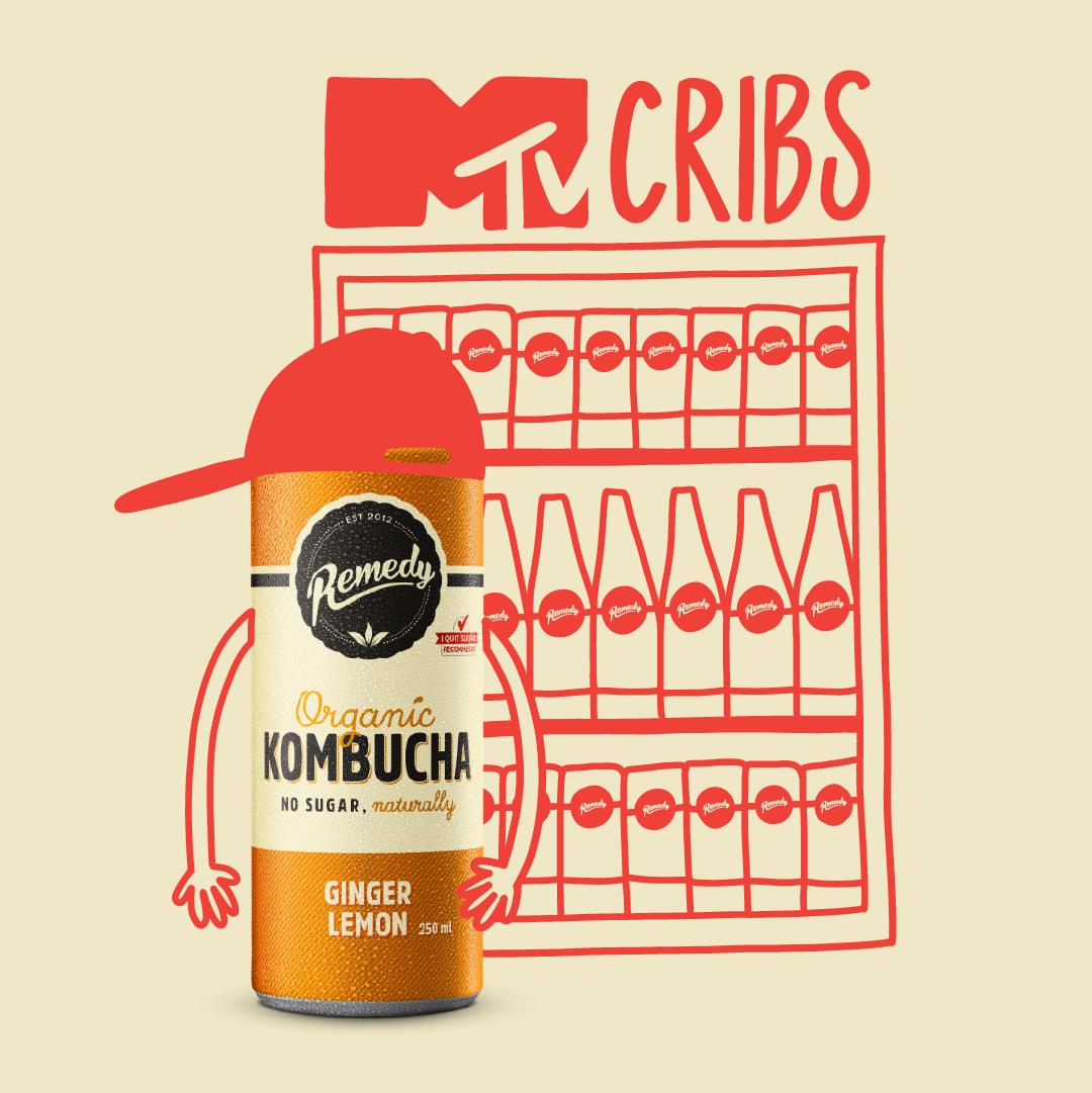 MTV Cribs - Remedy Edition